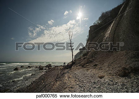 Stock Image of Denmark, Mon Island, Mons Klint Chalk cliffs.