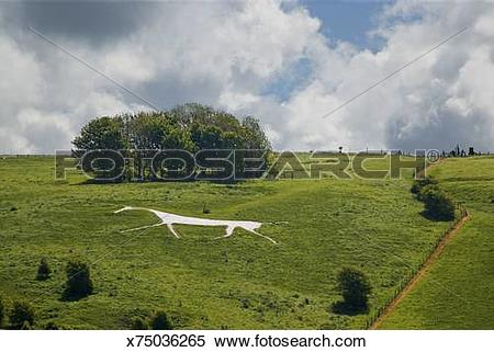 Stock Image of White Horse Chalk Figure, Hackpen Hill, Wiltshire.