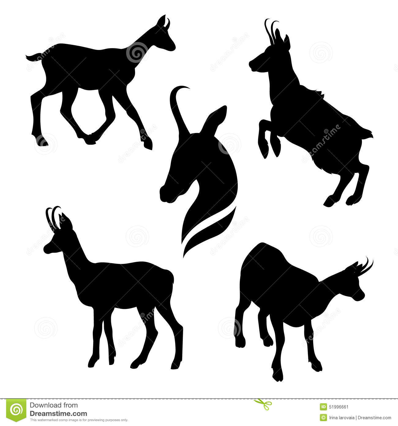 Chamois Stock Illustrations.