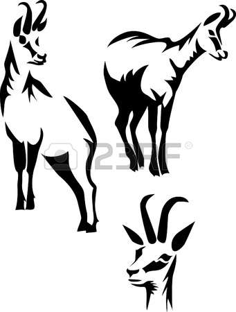 304 Chamois Stock Vector Illustration And Royalty Free Chamois Clipart.