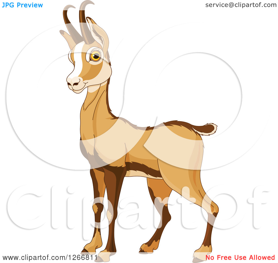 Clipart of a Cute Alert Rupicapra Antelope Chamois.