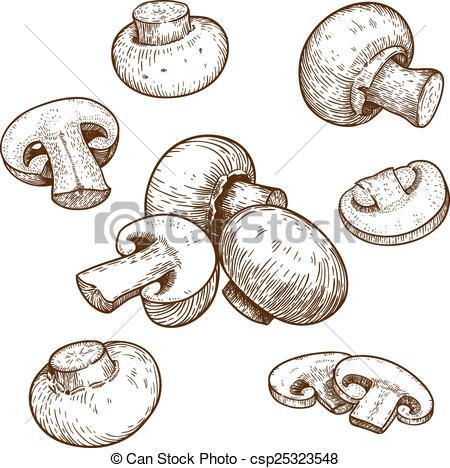 Champignons Stock Illustratie Beelden. Zoek onder 118 Champignons.