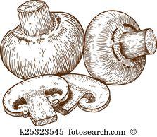 Champignons Clip Art Vector Graphics. 83 champignons EPS clipart.