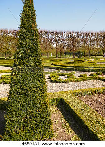 Stock Photography of Nice french garden with a fir triangular tree.