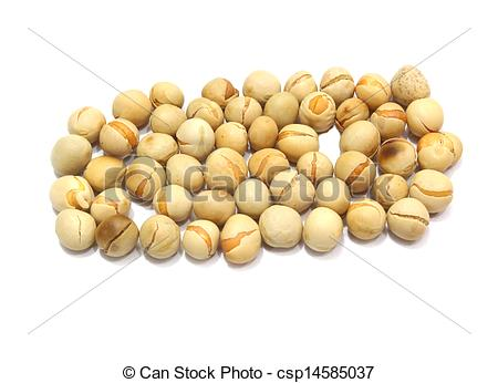 Stock Photos of chana dal in white background. csp14585037.