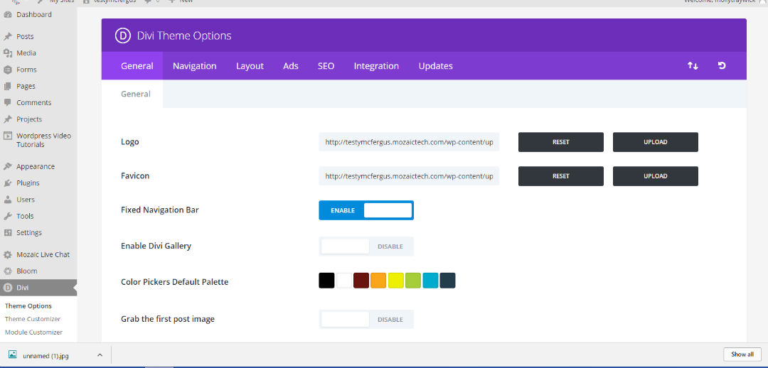 Change The Logo In The Divi Theme Options.