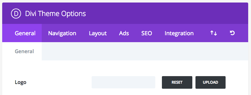 Divi Wordpress Theme Options.