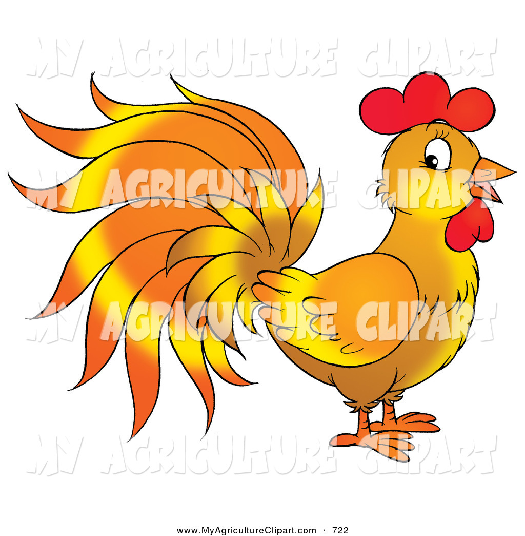 Royalty Free Chanticleer Stock Agriculture Designs.