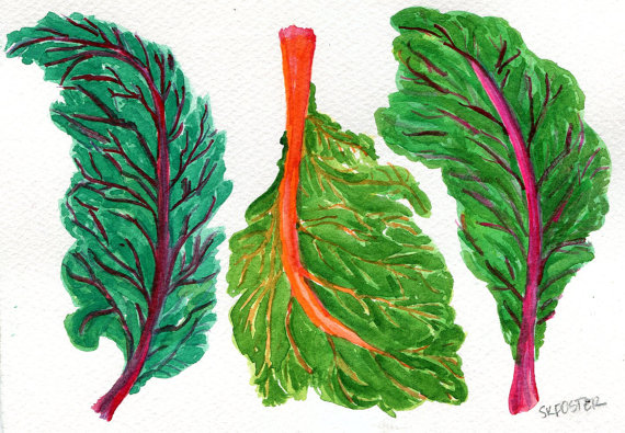 Swiss Chard original watercolor painting by SharonFosterArt.