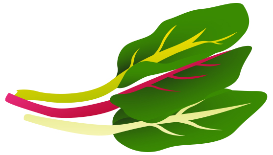Gallery For > Clipart Swiss Chard.
