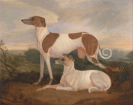 Painted, Dog.