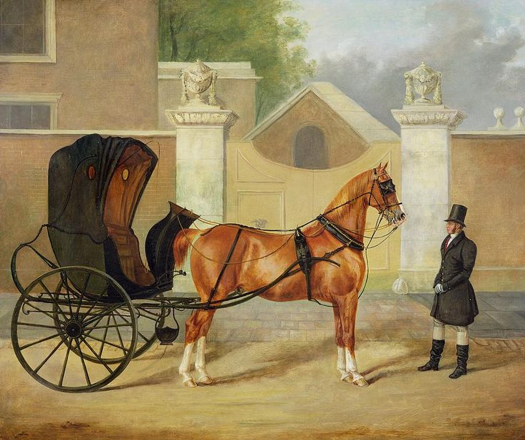 1000+ images about Equine Art on Pinterest.