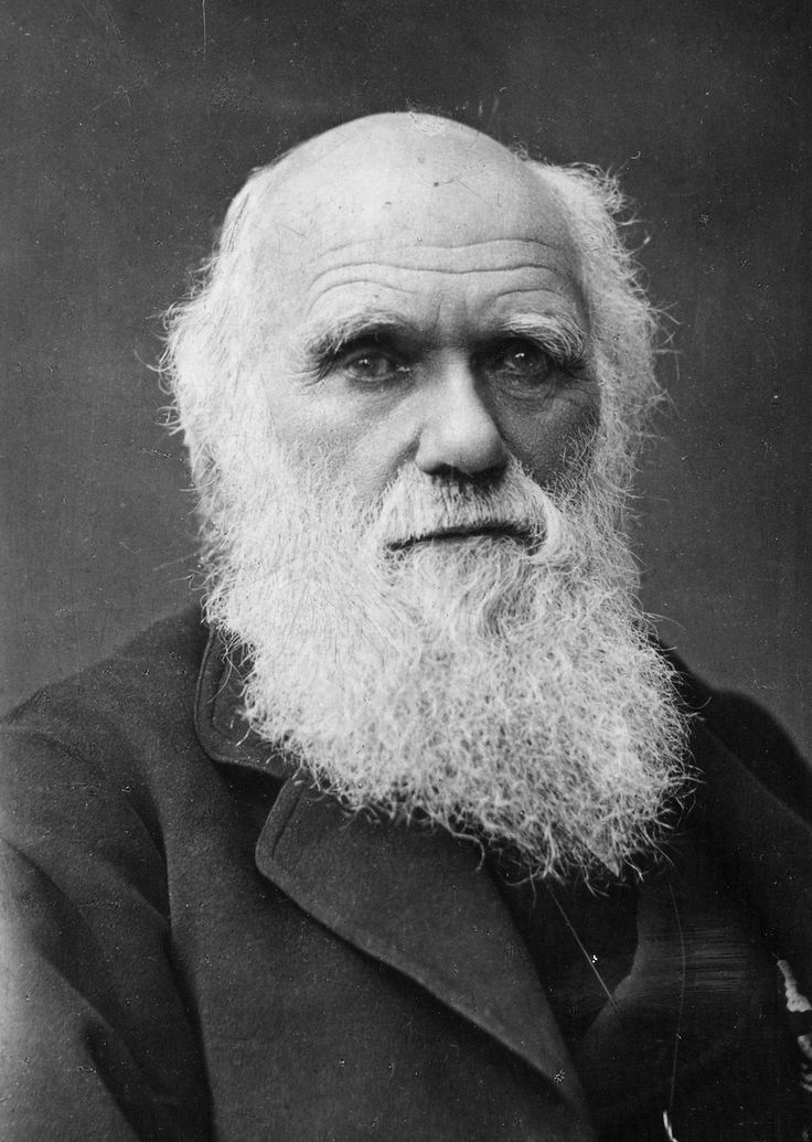 1000+ images about Charles Darwin on Pinterest.