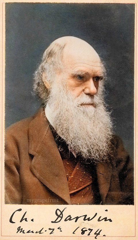 1000+ ideas about Charles Darwin on Pinterest.