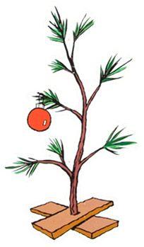 Pin by Melanie Lewandoski on Christmas in July.