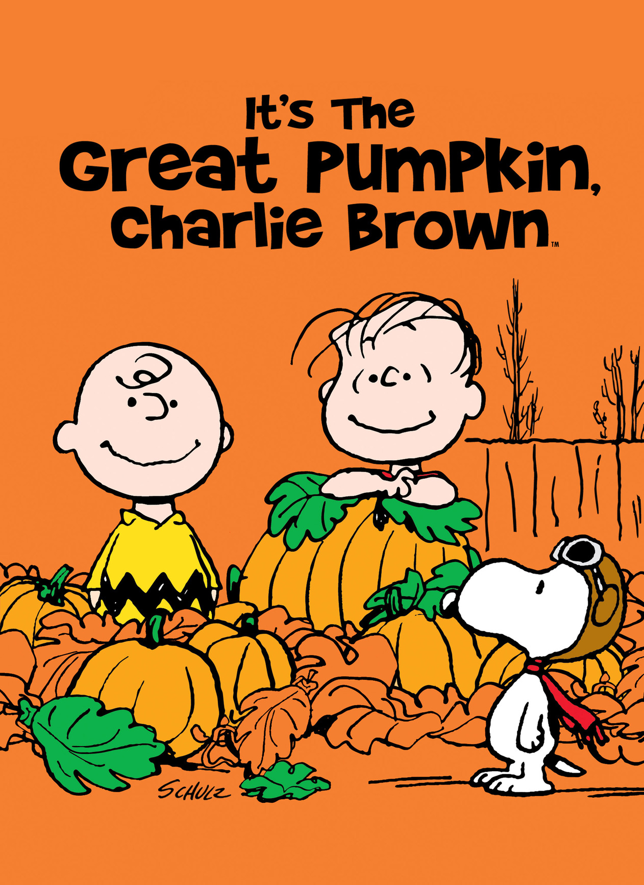 Halloween Countdown: 'It's the Great Pumpkin, Charlie Brown.