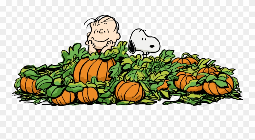 Halloween Charlie Brown Clipart.
