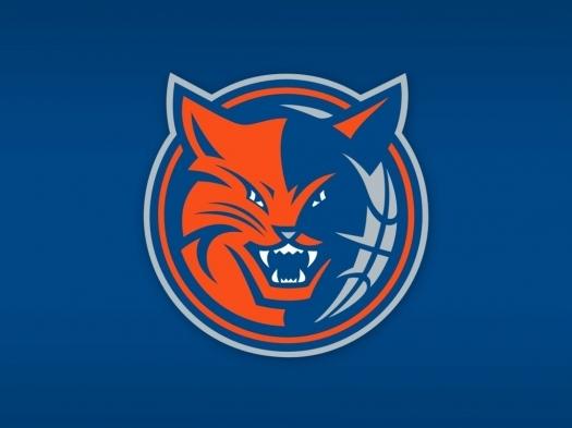 Charlotte Bobcats Logo.