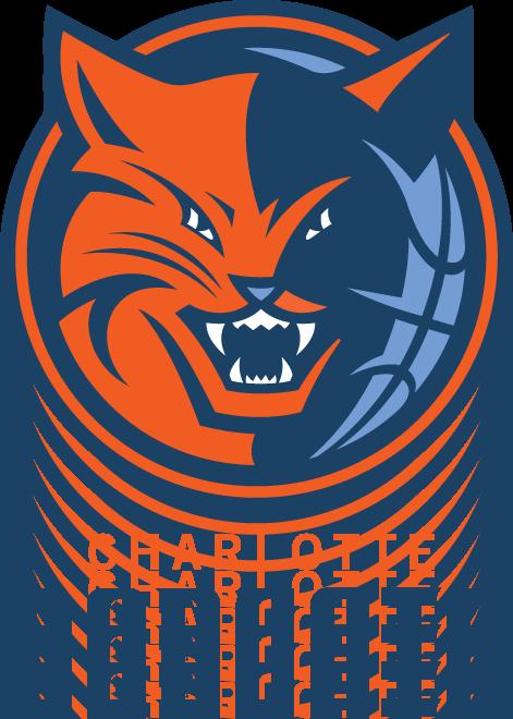 HD Charlotte Bobcats 12.