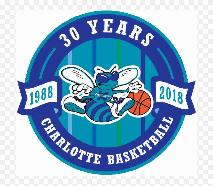 Charlotte Hornets Logos Iron Ons.