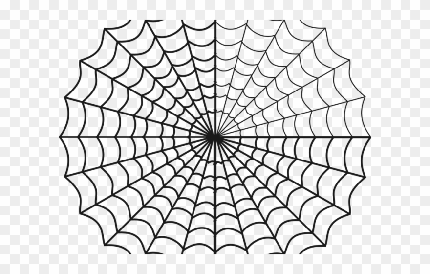 Drawn Spider Web Circle.