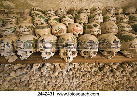 Stock Photography of Skulls on shelves in charnel house, Hallstadt.