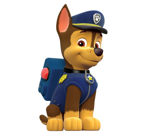 Paw Patrol Birthday in 2019.