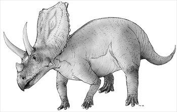 Free Chasmosaurus Clipart.