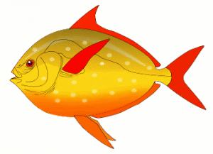 Red Fish Clip Art Download.