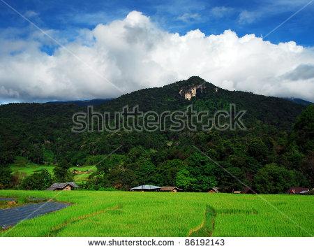 """japan Nature"""" Stock Photos, Royalty."""