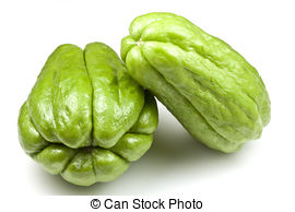 Seed chayote Images and Stock Photos. 24 Seed chayote photography.