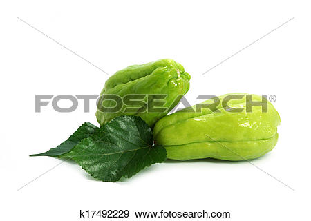 Stock Photograph of Chayote Squash On White Background k17492229.