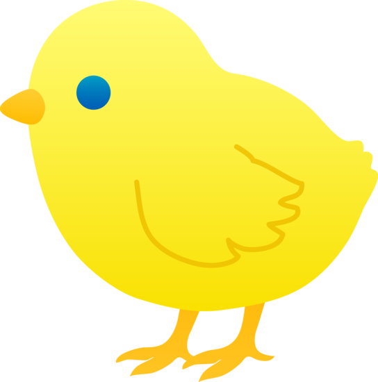 Chicks clipart #5