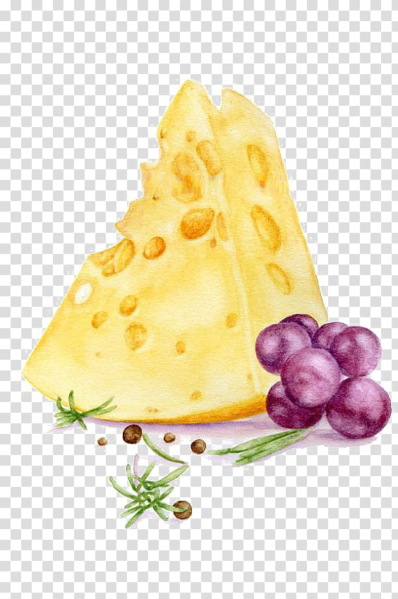 Cheese and grapes , Watercolor painting Art Printmaking Illustration.