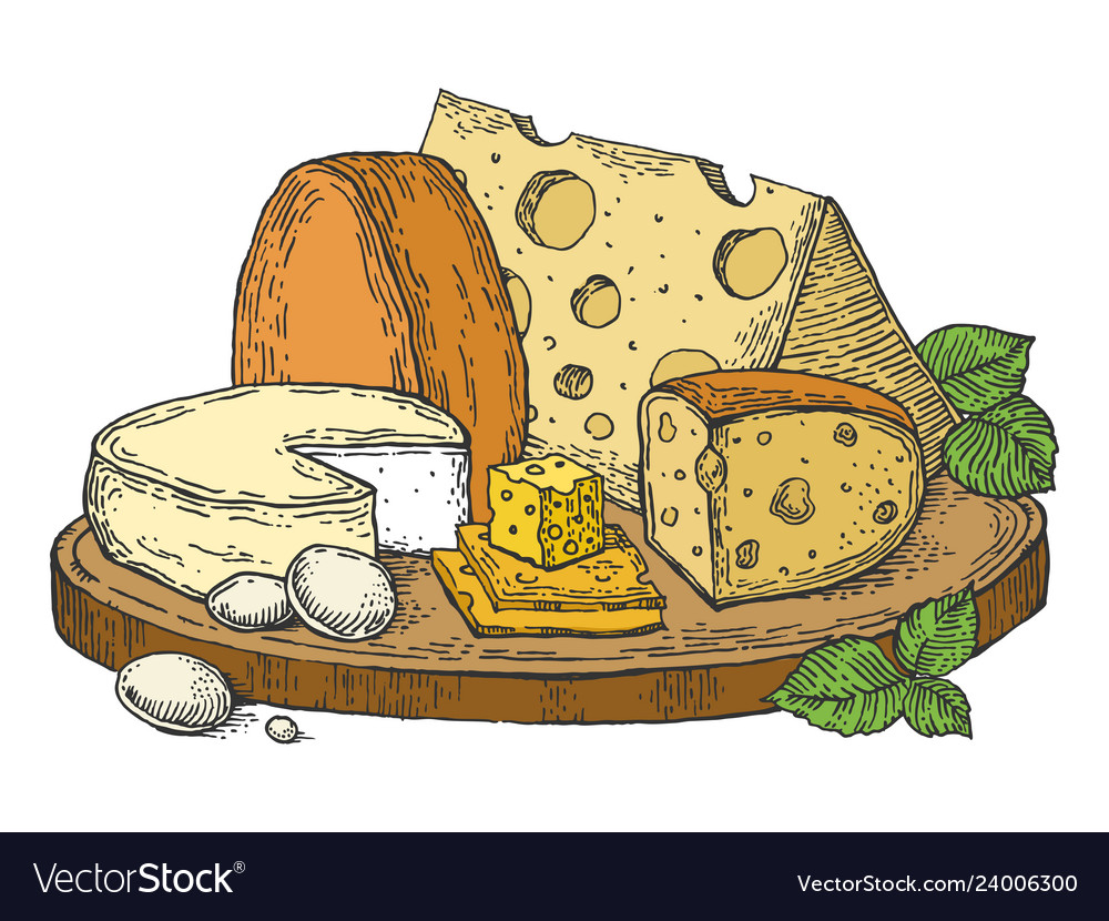 Plate cheese color sketch engraving.