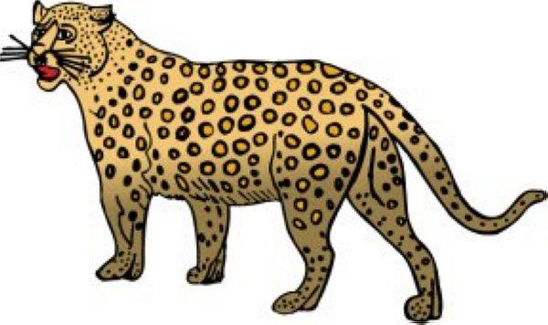Cheetah Clipart , Cheetah Free Clipart.