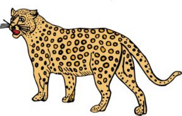 Cheetah Clipart.