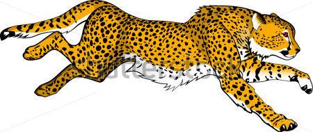 Cheetah Clipart & Cheetah Clip Art Images.