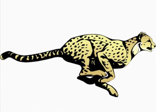 Cheetah clip art download.