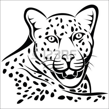 756 Leopard Eyes Stock Vector Illustration And Royalty Free.