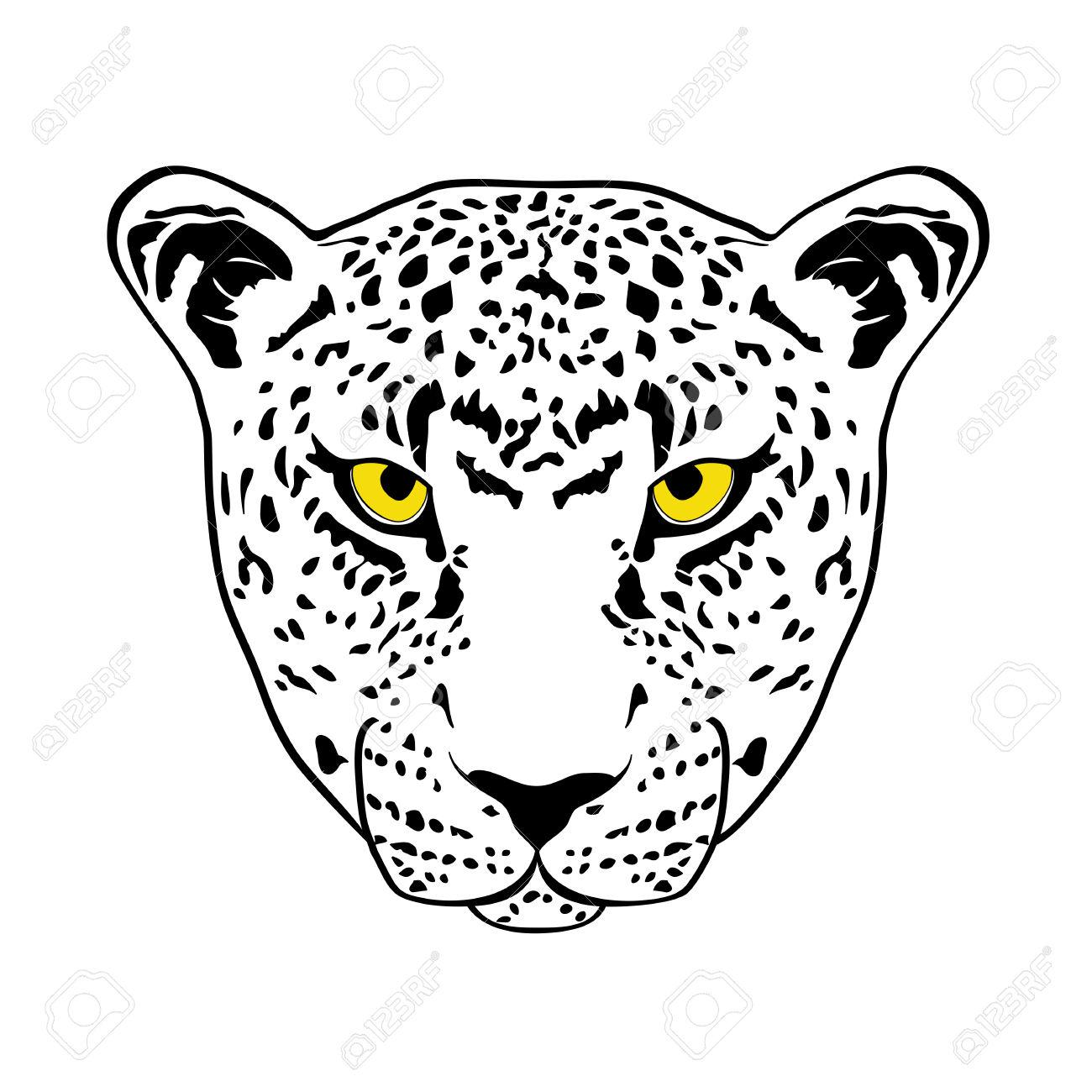 Yellow Eyes Cheetah Royalty Free Cliparts, Vectors, And Stock.