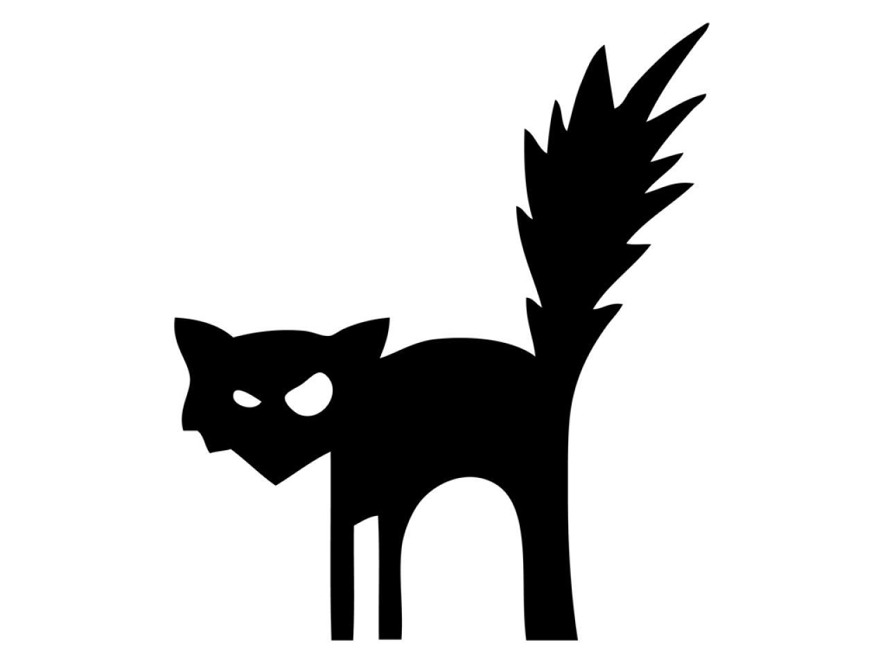 Cheetah Print Pumpkin Black And White Clipart Clipground