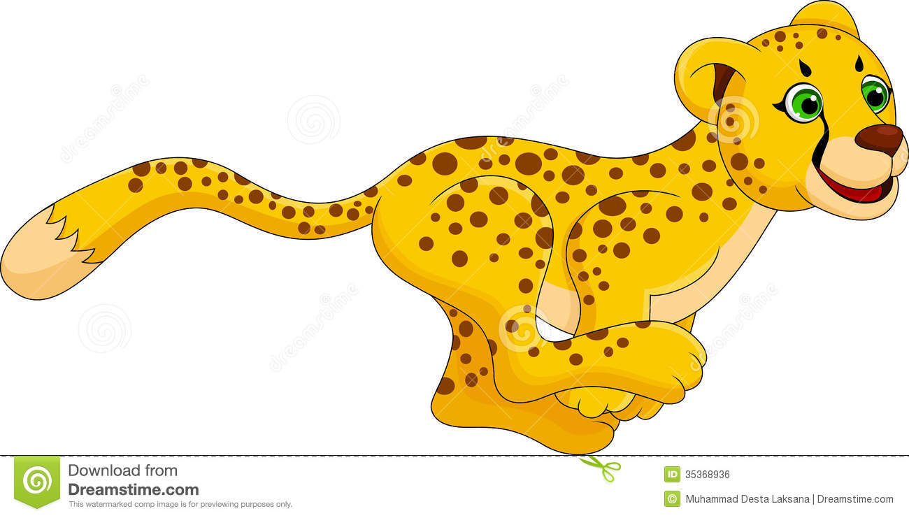 Cheetah Stock Illustrations.