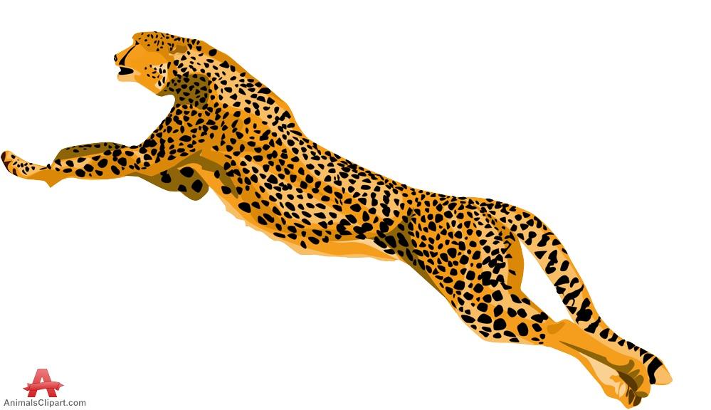 Cheetah clipart 4.