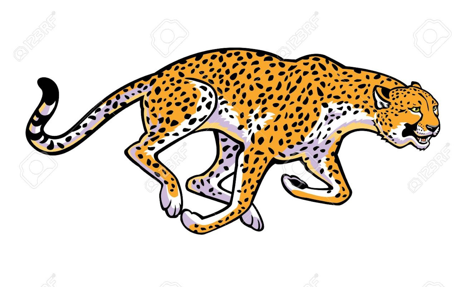 Cheetah Clipart, Colorings, And Other Free Printable Design.