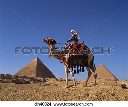 Stock Photo of Egypt, Cairo, Giza, Chephren and Cheops Pyramids.