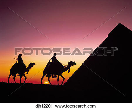 Stock Photography of The Pyramid of Chephren with Camels and.