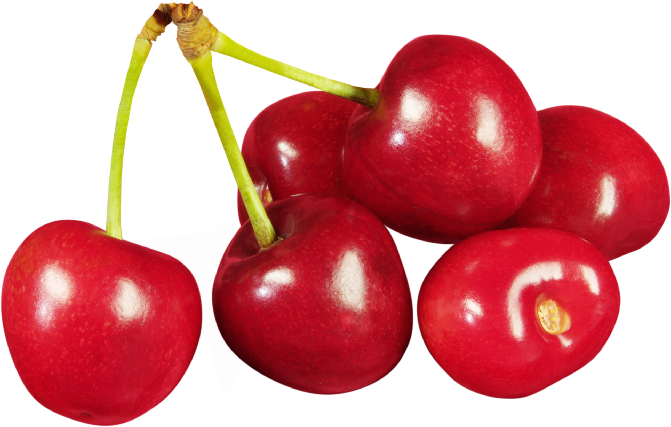 Best Cherry Clipart #15849.