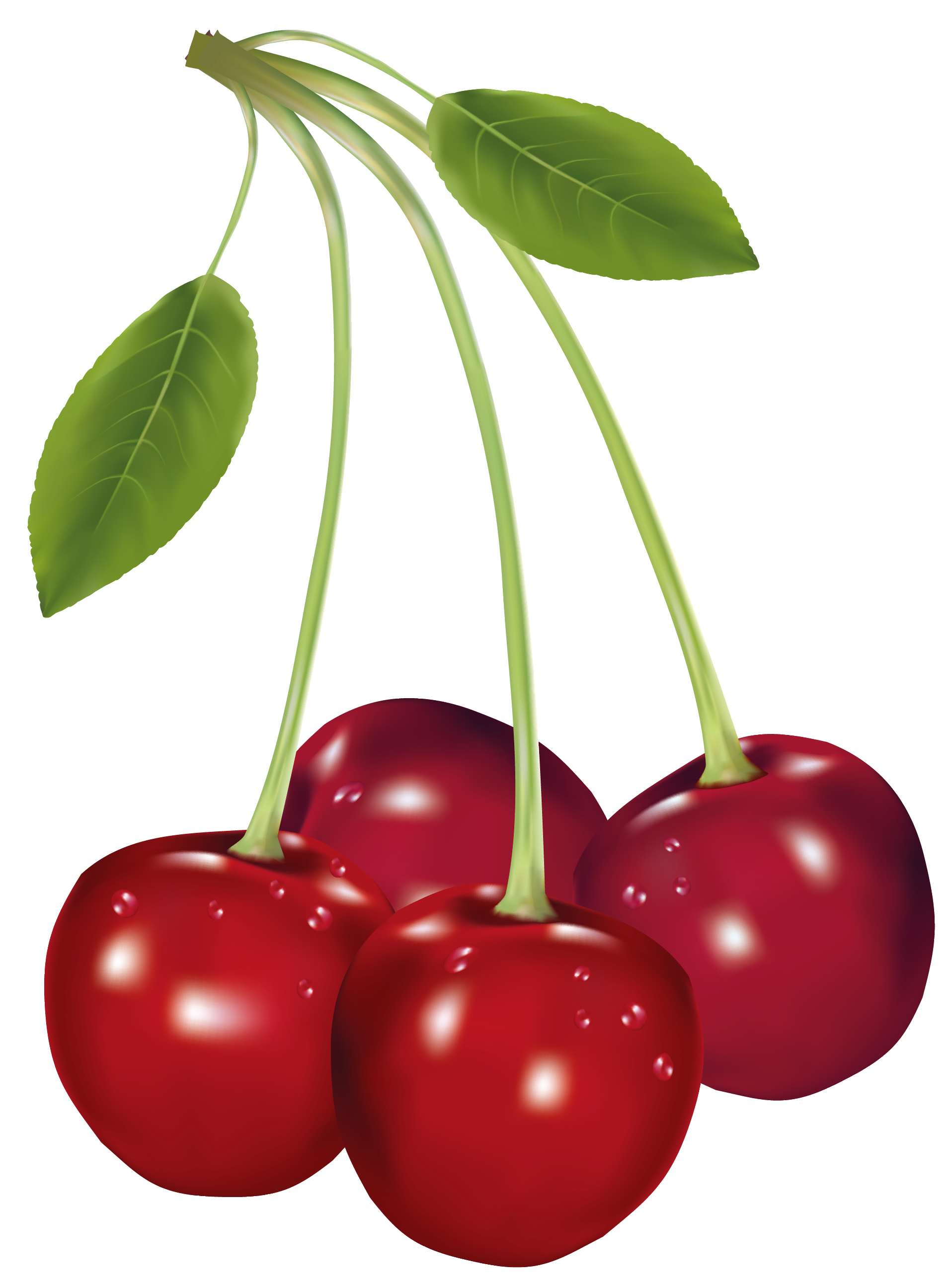 red cherries clipart clipground. Black Bedroom Furniture Sets. Home Design Ideas