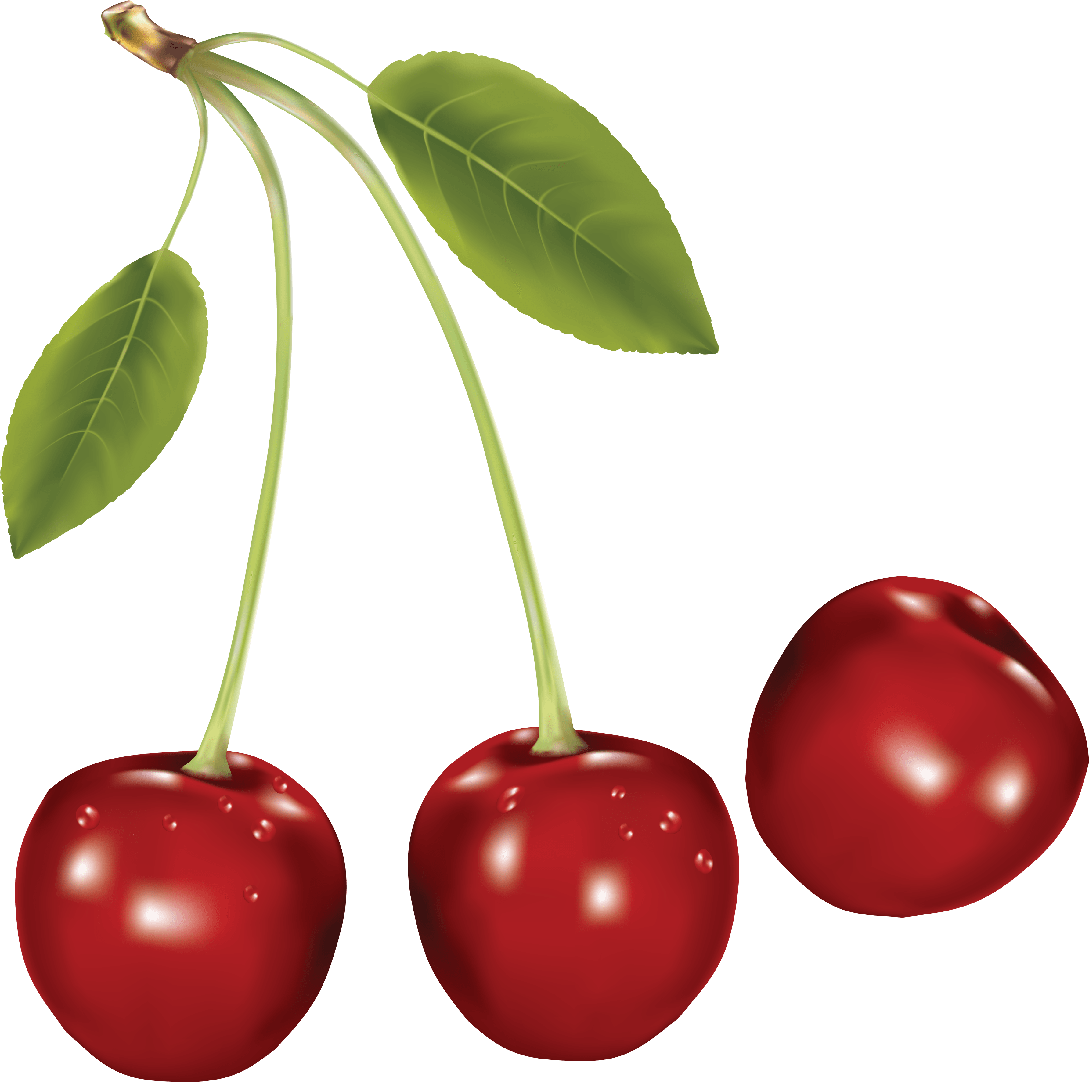 Download Cherries Png Image HQ PNG Image.